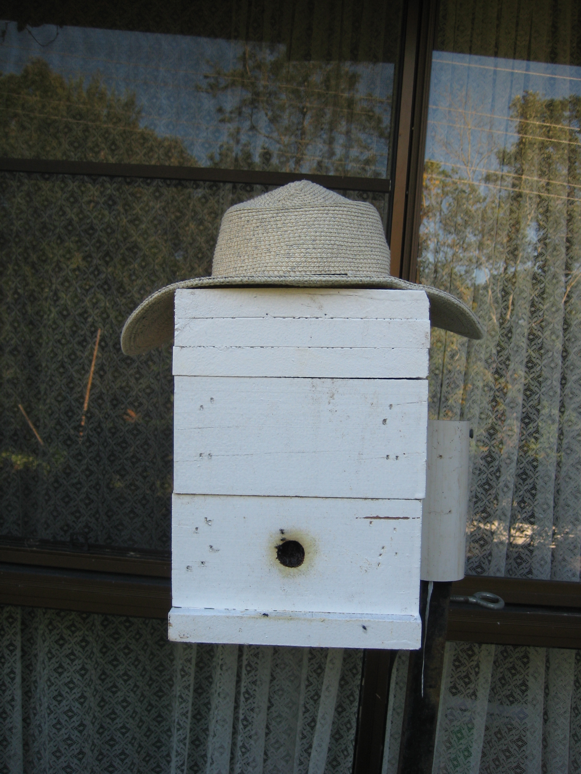 photo of my hive outside my office – the hive design is an OATH